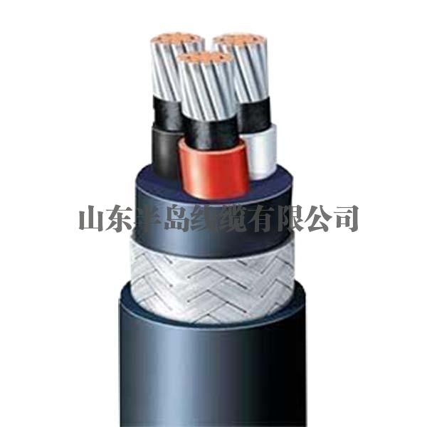 江苏船用电缆